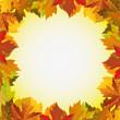 рамка из осенних листьев