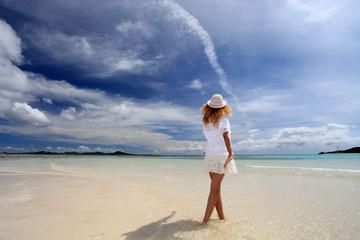 南国のビーチと女性