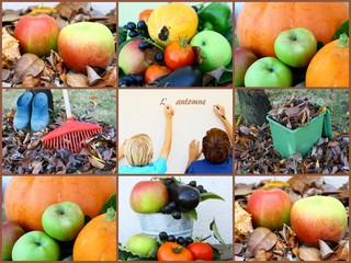 """composition d""""automne"""