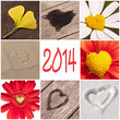 2014, collage coeurs nature