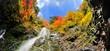 錦秋の渓谷