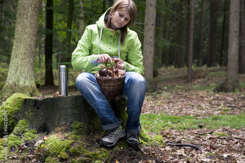 Women cleaning mushroom after Picking, Mushrooming