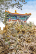 The Imperial Garden of The Palace Museum, Forbidden City, Beijin