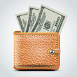 Brown Leather Wallet. Dollar USA . Vector