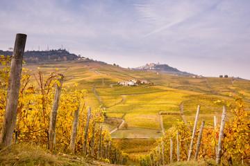 Vigne d'Autunno a Barolo, Piemonte