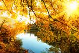 Herbstsonne am Fluss - Fine Art prints