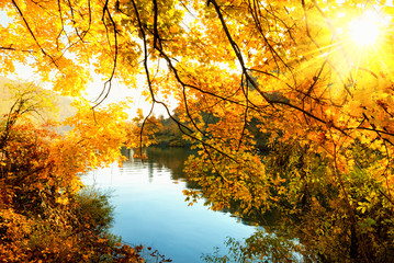 Herbstsonne am Fluss