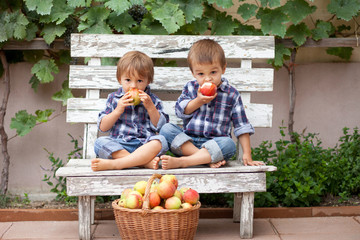 Two boys on a bench eating apples