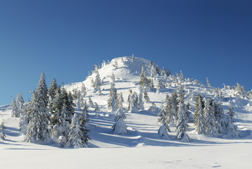 Mountains and forest in the winter time. Beautiful landscape
