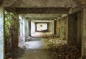 Overgrown corridor