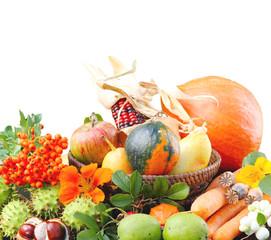 Bunte Herbstfrüchte vor weißem Hintergrund