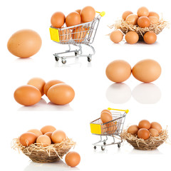 Egg collection isolated on white background.  Brown eggs