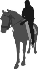 Vector silhouette of the rider on a horse