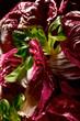 Gemischter Blattsalat mit Feldsalat und Radicchio