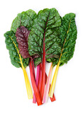 Swiss chard Rainbow