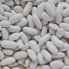 White haricot bean background