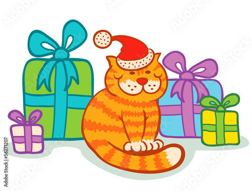 Cat and presents