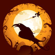 Halloween - Crow in Halloween night