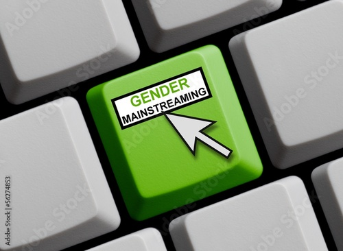 Gender Mainstreaming online