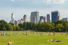Fototapete - Sheep Meadow New York City
