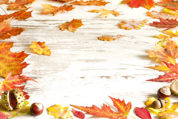 Autumn leaves on white boards background border