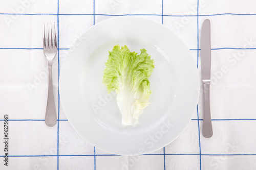 Concept for diet with a lettuce leaf on a dish