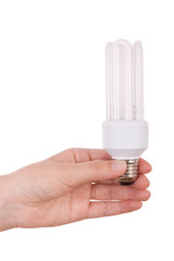 Hand holding compact fluorescent light bulb isolated on white.