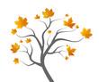 Laubbaum Herbst