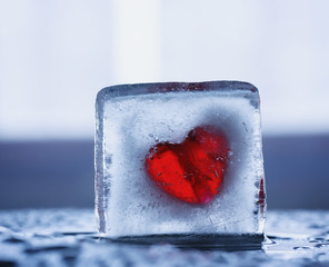 Frozen heart in a piece of ice