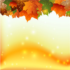 Осенний фон с каплями воды