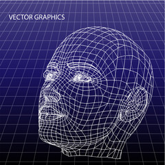 Vector model of face