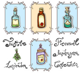 magic herbal potions set