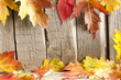 Autumn leaves on vintage boards background border