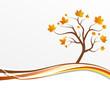 Laubbaum Herbst Karte