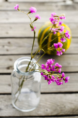 purple flowers in a glass bottle on the background of pumpkin