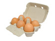 Half dozen  brown chicken eggs in box