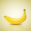 Banana design, vector illustration