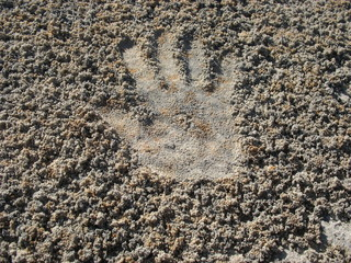 Отпечаток  руки на рыхлом песке