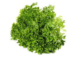 Eskariol - Salat