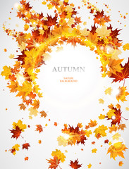 Abstract autumnal  background  with leaves