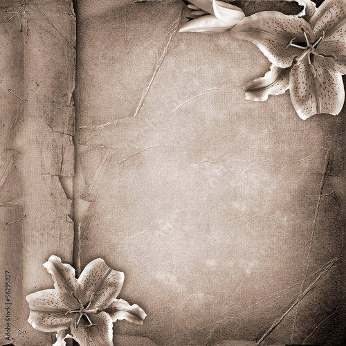 Lillies over old paper album cover © o_april