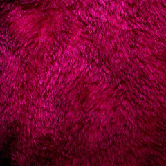Purple fur texture