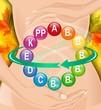 Витаминный комплекс для пищеварительного тракта