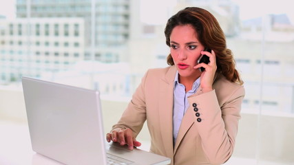 Gorgeous businesswoman using a laptop while calling someone