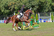sporting event. show jumping