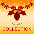 New autumn collection. Background with maple leaves.