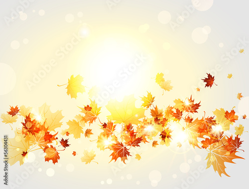 Autumnal background with maple leaves and lights
