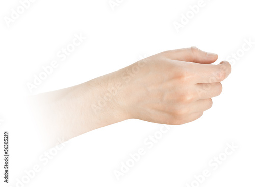 hand hold something on a white background