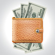 Brown  Wallet. Dollar USA .Vector