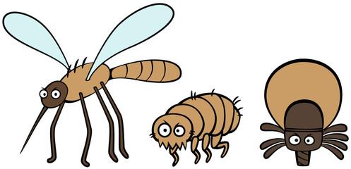 parasites mosquito flea and tick